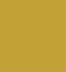 photo of Kadozakjes gebleekt kraft 17cm  x 25cm goud onbedrukt 70gr / m2