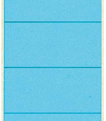 photo of Rugetiket Leitz breed/kort 62x192mm zelfklevend blauw