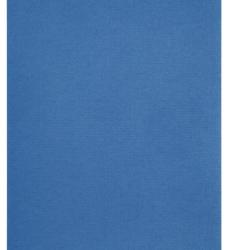 photo of Kopieerpapier Papicolor A4 100gr 12vel donkerblauw