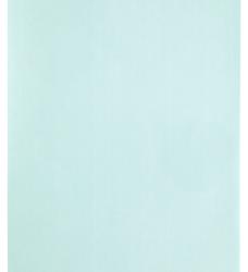photo of Kopieerpapier Papicolor A4 100gr 12vel zeegroen