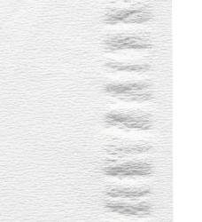 photo of Tissue Satino Prestige 2-laags 100stuks