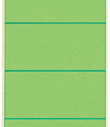 photo of Rugetiket Leitz breedkort 62x192mm zelfklevend groen