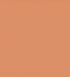 photo of Scheidingsstrook Elba breed 225x120mm 190gr oranje