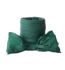 photo of Crepelint mat groen  50m