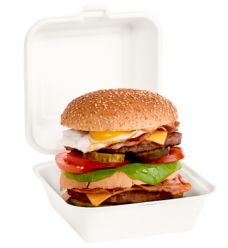 photo of bagasse/suikerriet snackbak hamburger beige