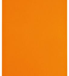 photo of Kopieerpapier Papicolor A4 100gr 12vel oranje