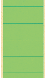 photo of Rugetiket Leitz breed/lang 62x285mm zelfklevend groen