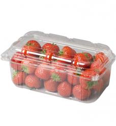 photo of Fruitbak met vaste deksel 11.5cm x 19cm  x 8.5cm  500gr transparant