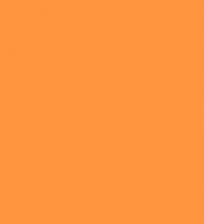 photo of Scheidingsstrook Kangaro smal 240x105mm 180gr oranje
